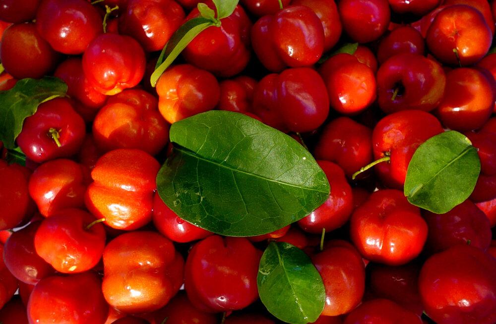 Tugeva tervise nimel: 10 vitamiini, mis praegusel ajal toidulaualt puududa ei tohi!
