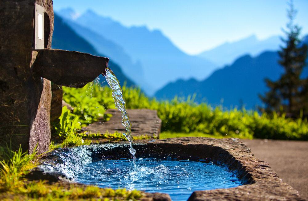 Vesi on elu alus! Täna tähistatakse rahvusvahelist veepäeva