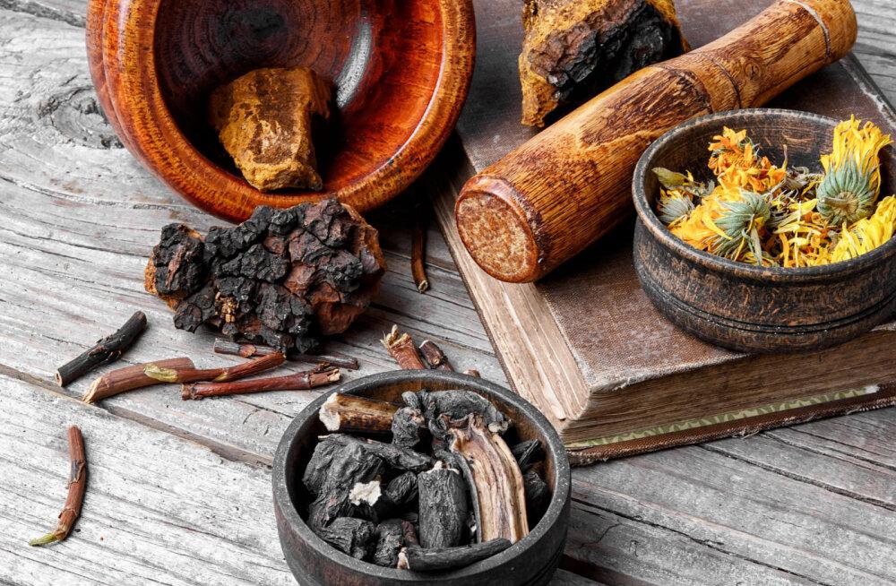 Must pässik | Võimas raviseen, mis tugevdab immuunsüsteemi ja tõstab vastupanuvõimet haigustele