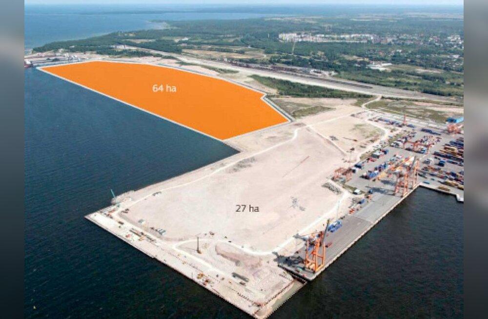 Госконтроль расследует тайную миллиардную сделку в порту