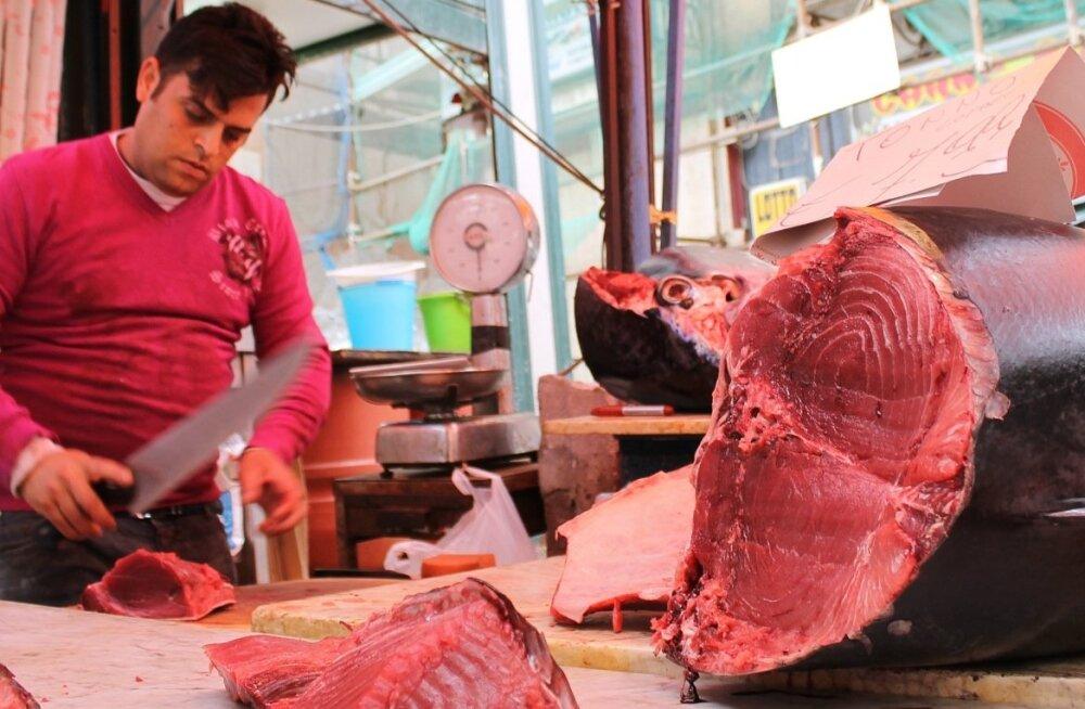 Tuunikala tükeldamine Itaalias.