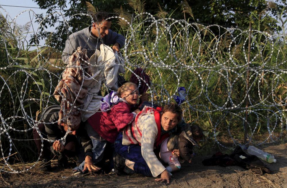 ÜRO: Ungari valitsus hoiab tagasi lükatud varjupaigataotlejaid näljas