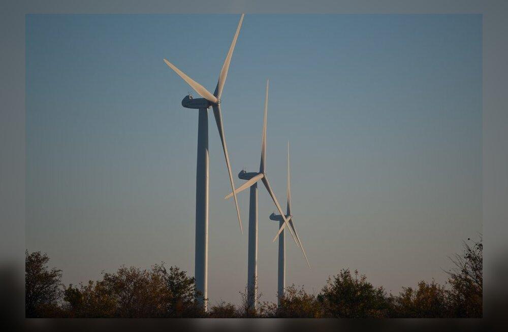 Эндель Сифф собирается строить в Эстонии крупнейший в мире парк ветрогенераторов