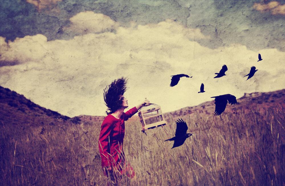 Alkeemia lugemisnurk | Asjadest lahtilaskmise kunst: oma vähem, ole rohkem!