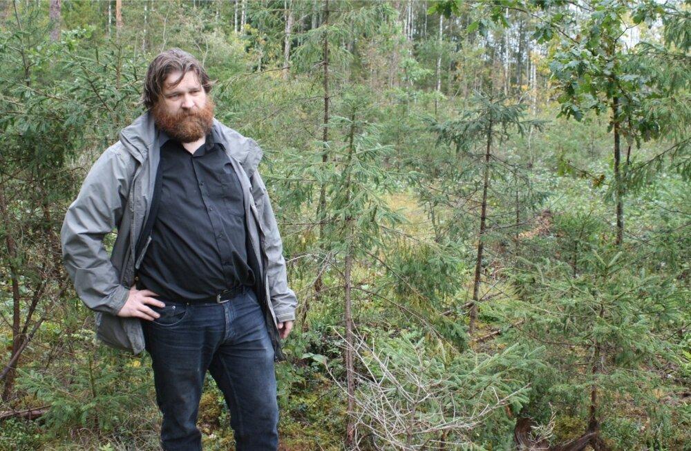 Rainer Kuuba usub, et metsa saab ja peakski majandama, sh raiuma nii, et pärast inimese tehtud töid ei jääks järele steriilne mets.