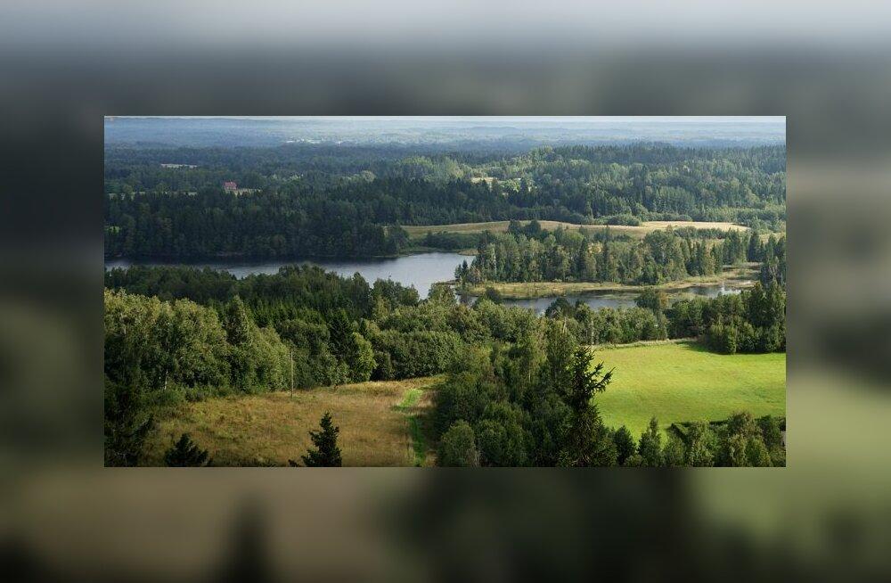 Eesti e-kodanikuks olemise vastu tunnevad huvi tuhanded