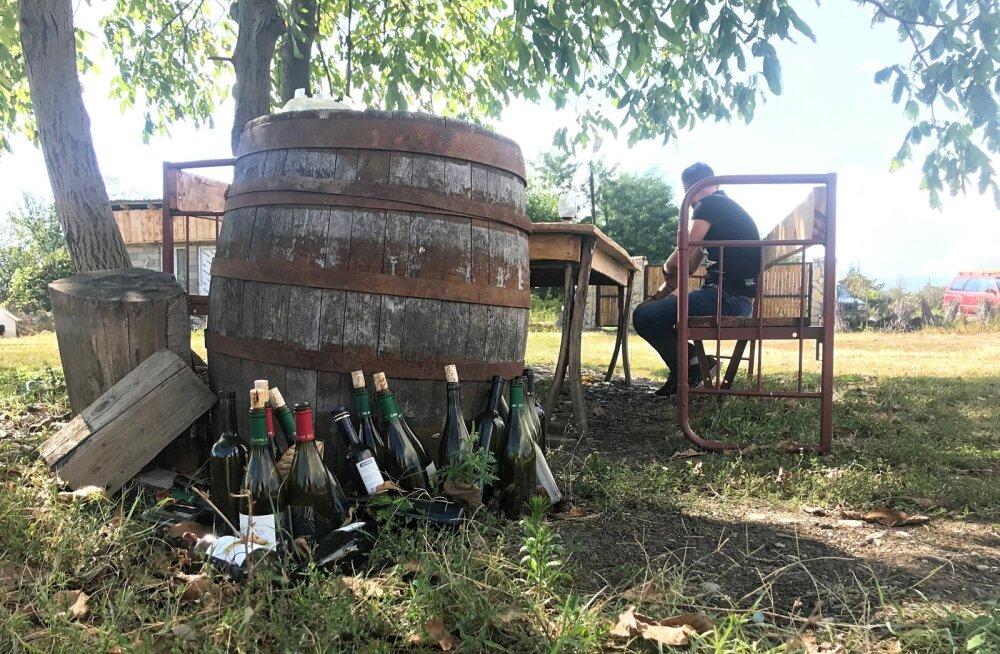 SUPRA – kuidas grusiinide veinipeol ellu jääda?