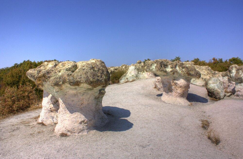 ФОТО: Гигантские каменные грибы Бели Пласт в Болгарии