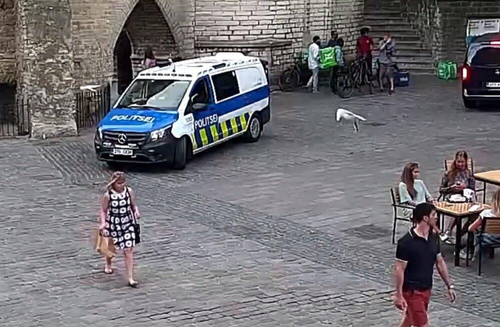 ВИДЕО | В Старом Таллинне задержан лжеполицейский, который требовал у людей документы