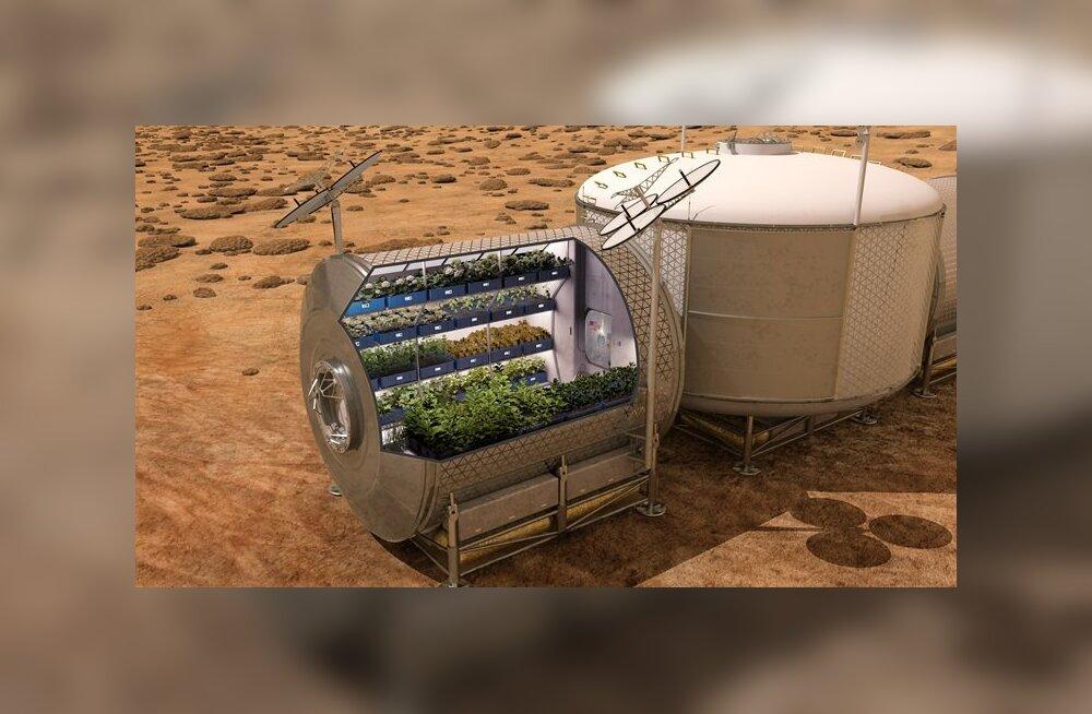 Inimese Marsile lennutamise plaanid on ikka rahata jäänud