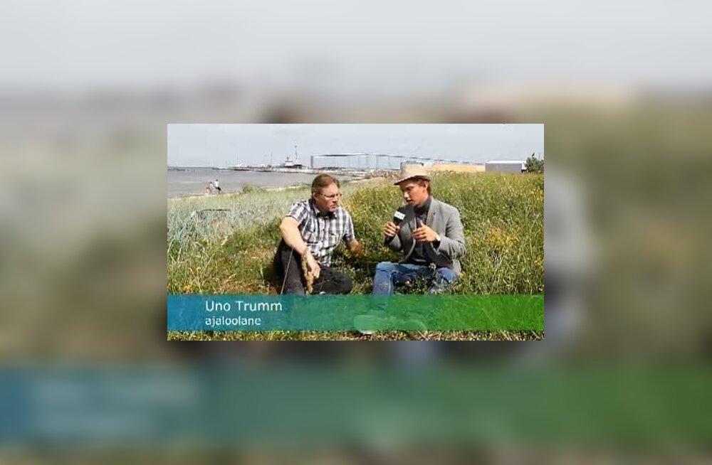 VIDEO: 20 aastat tagasi poleks Kundas rohu peale istunud
