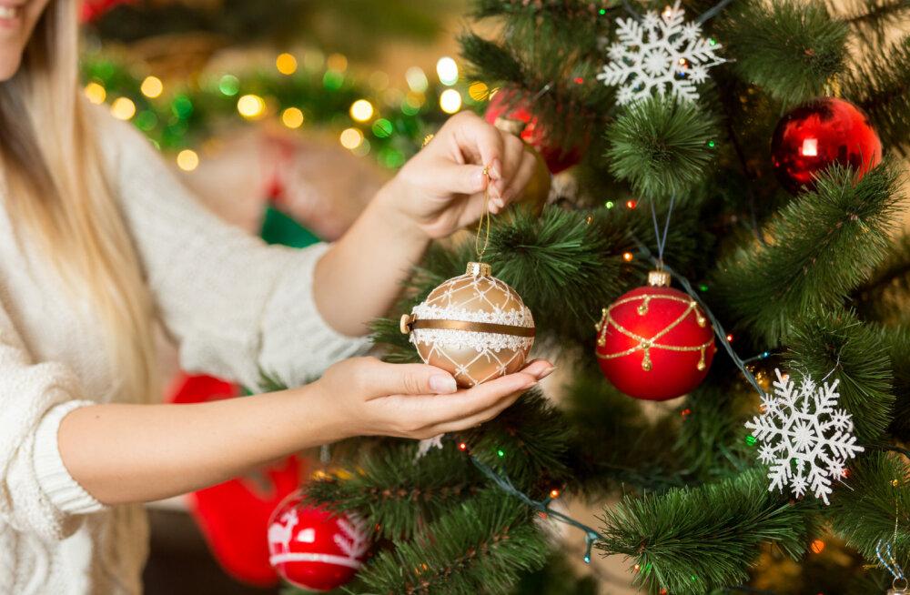 TÄNAST KOLMEKUNINGAPÄEVA tähista jõulukuuse väljaviimisega