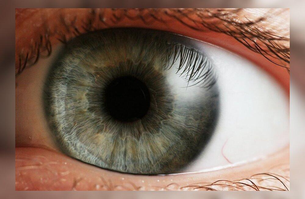 Viska pilk peale: nutiseade võib kasutajat tuvastada silmaskänneri abil