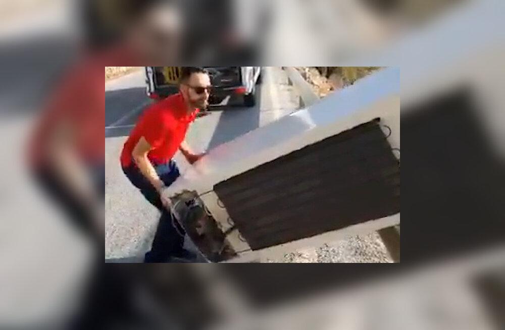 VIDEO| Külmkapi mäest alla tõuganud hispaanlane pidi selle tagasi üles vedima