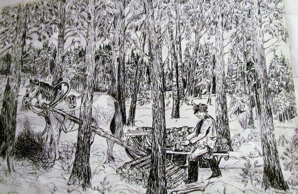Leili metsalood | Vana metsavahi pildid