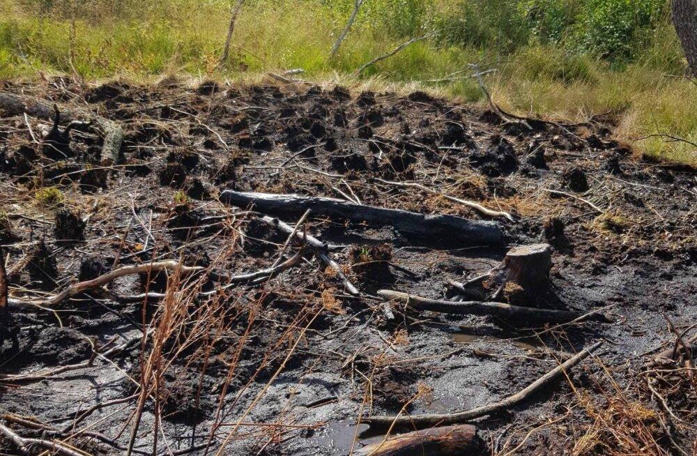 MEIE MAA | Muhus põles maastik kolmandat korda nädala jooksul