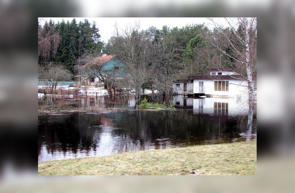 Muistse järve taasleidmine: Ülemiste järve juured pärinevad Sakust