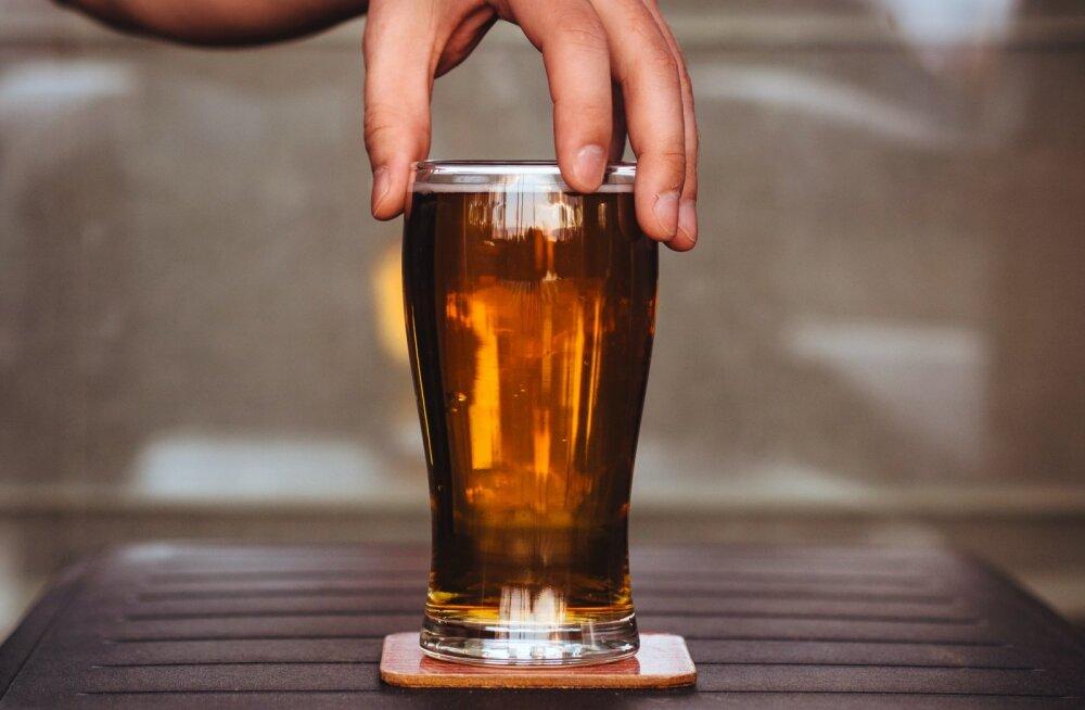 Названа относительно безопасная доза пива в сутки