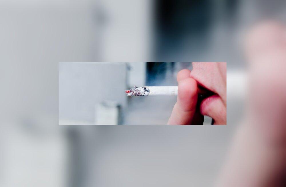 Uus tubakaseadus lubaks vaid isekustuvaid sigarette