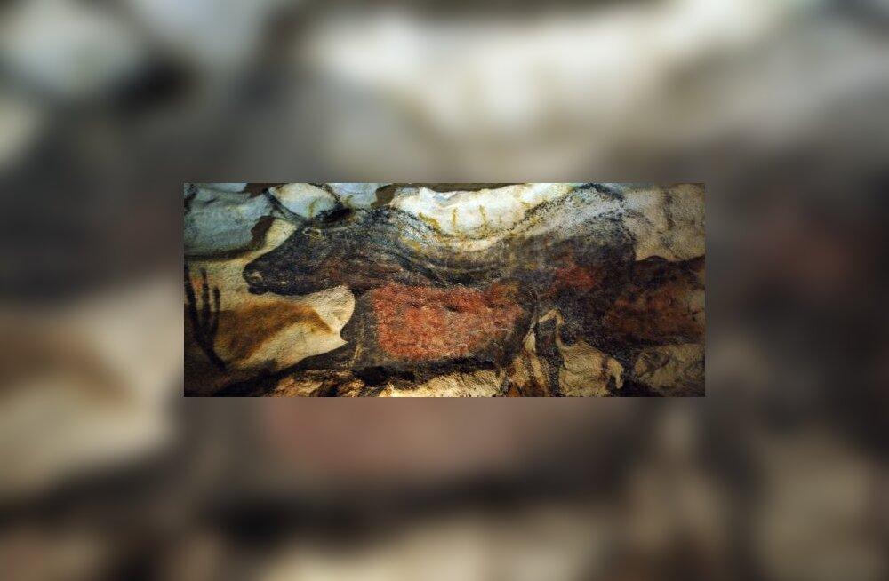 Seened hävitavad Lascaux' koopamaalinguid