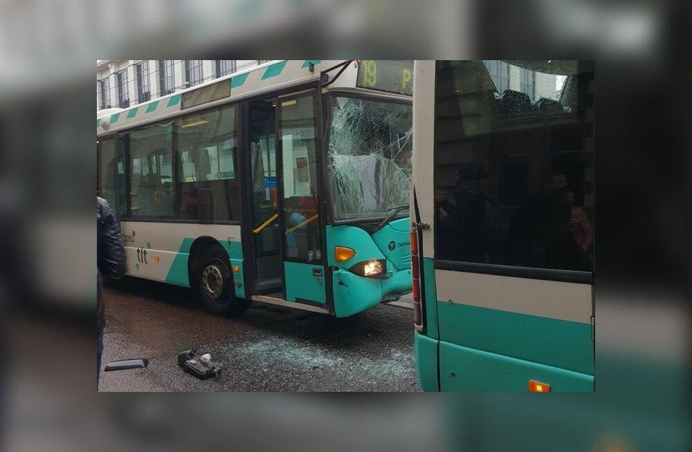 В Таллинне произошло столкновение двух рейсовых автобусов