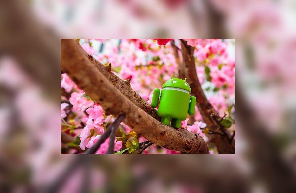 Mõne aastaga tippu: Android loob juba pea sama palju veebiliiklust kui Windows