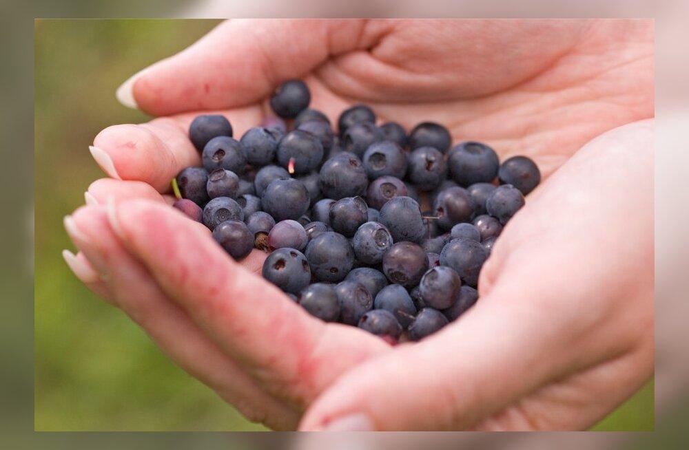 Parimad taimsed rauaallikad ja mõned mõtted rauast