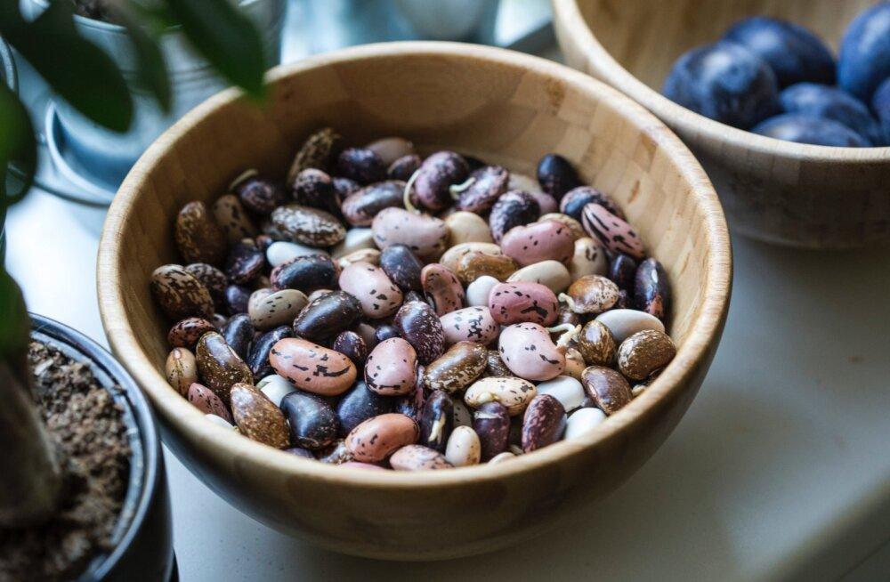 Viis põhjust, miks kaunviljad võiks olla meie toidulaual vähemalt kolm korda nädalas