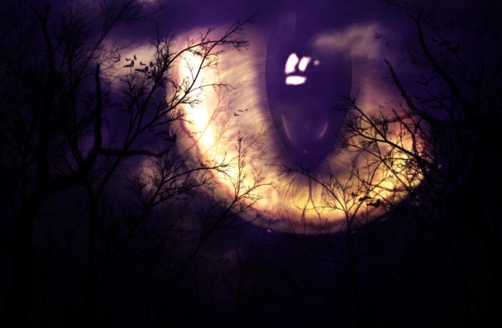 7 olulist unenäosümbolit, millele peaksid alati tähelepanu pöörama