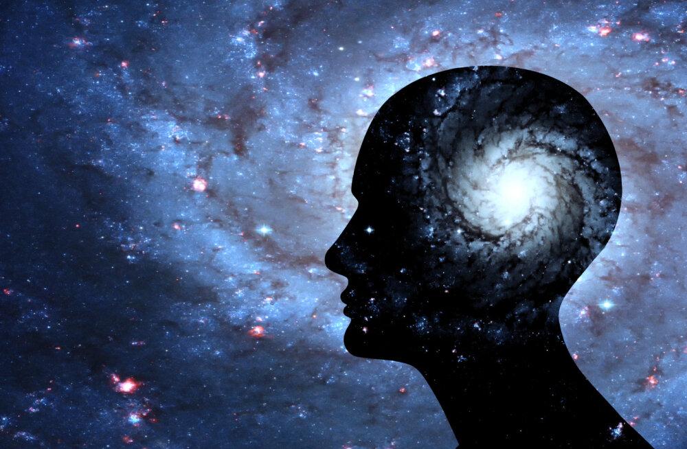 Universumil ja ajul on ühesugune struktuur