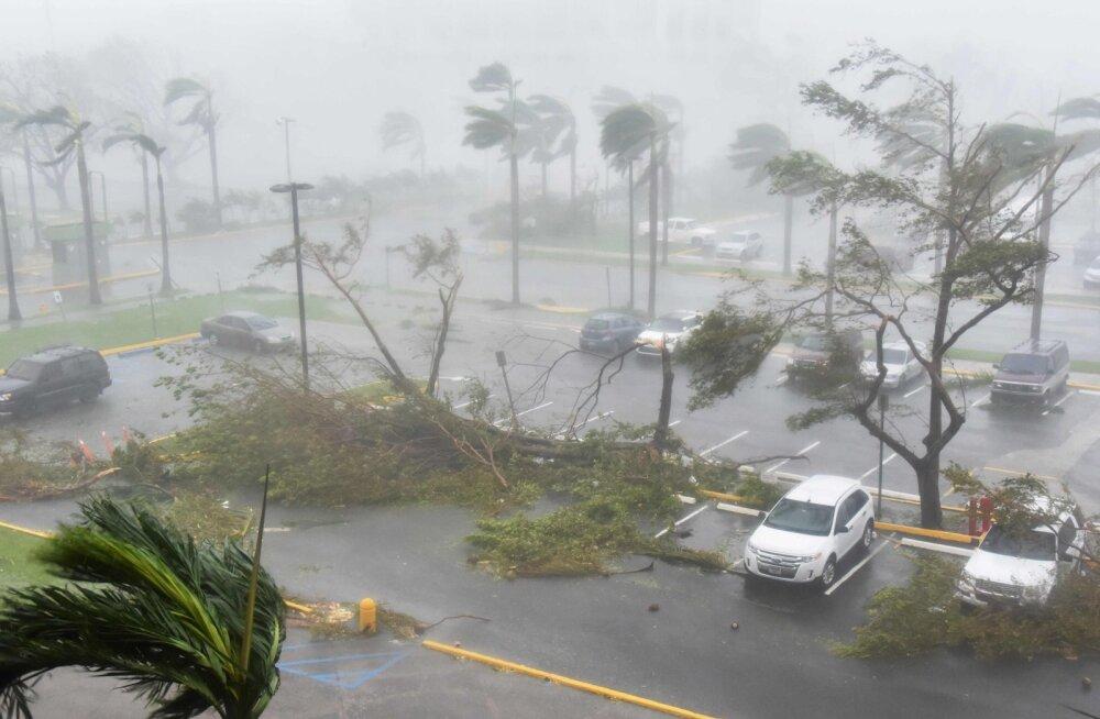 Rabav vahe: teadlased väidavad, et Puerto Ricol hukkus orkaani tõttu ametlikust numbrist 70 korda rohkem inimesi