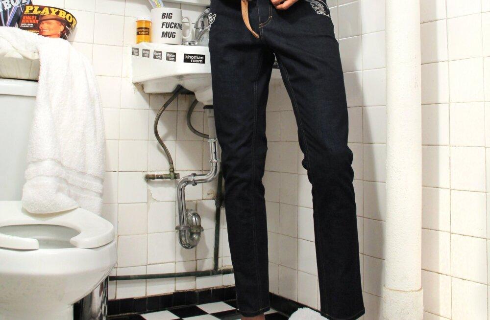 Huvitav fakt: mehed veedavad 7 tundi aastas tualettruumis telefoni näppides, et oma naiste ja laste eest põgeneda