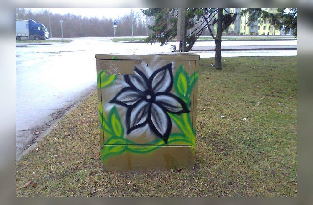 Grafiti Tartus Kalda teel