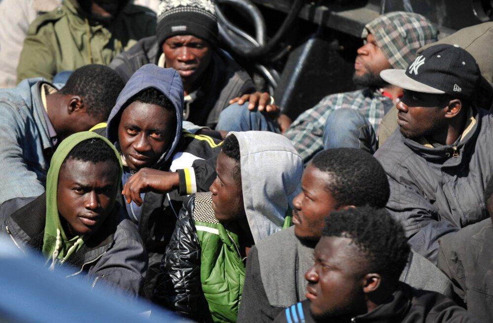 Почему эстонцам не стоит бояться мигрантов