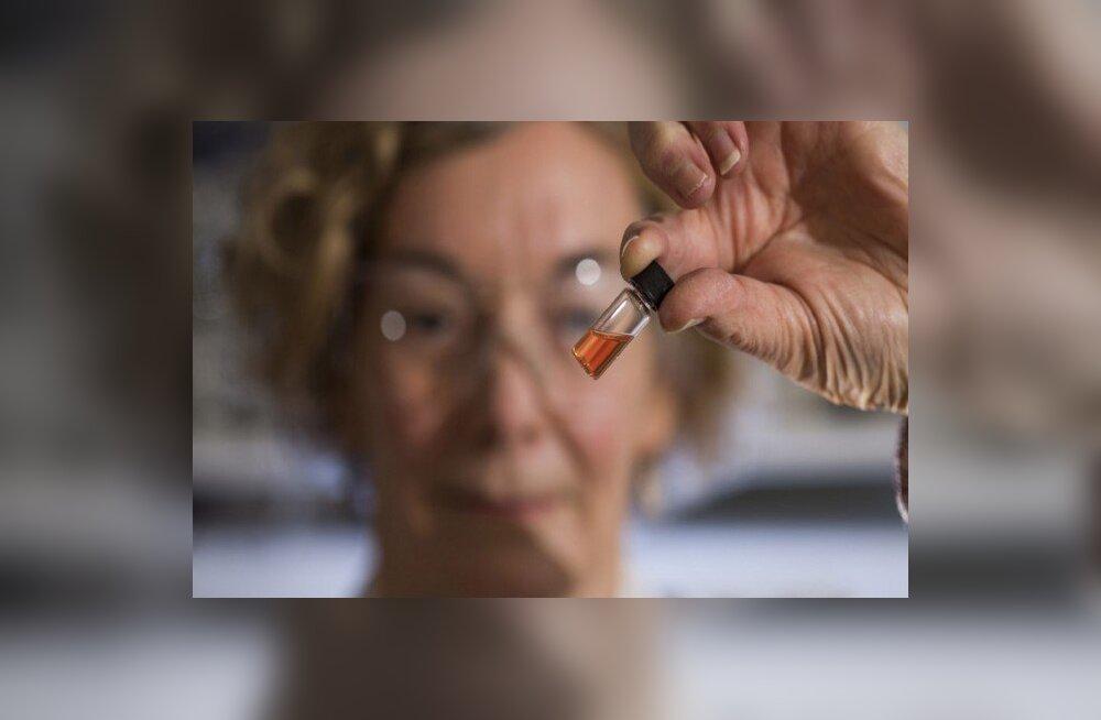 Maailma vanim leitud värvipigment aitab avada inimeste tekkimise saladusi