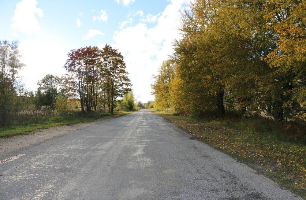 Sillamäe, Viivikonna