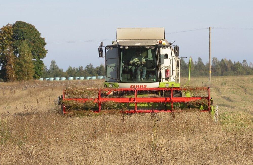 Põllumehed võtavad ilusatelt ilmadelt viimast.