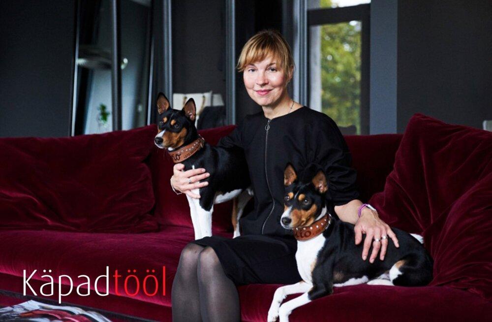 KÄPAD TÖÖL | Emerante mööblisalongis aitavad diivanit valida hoopis neljakäpalised müügikonsultandid