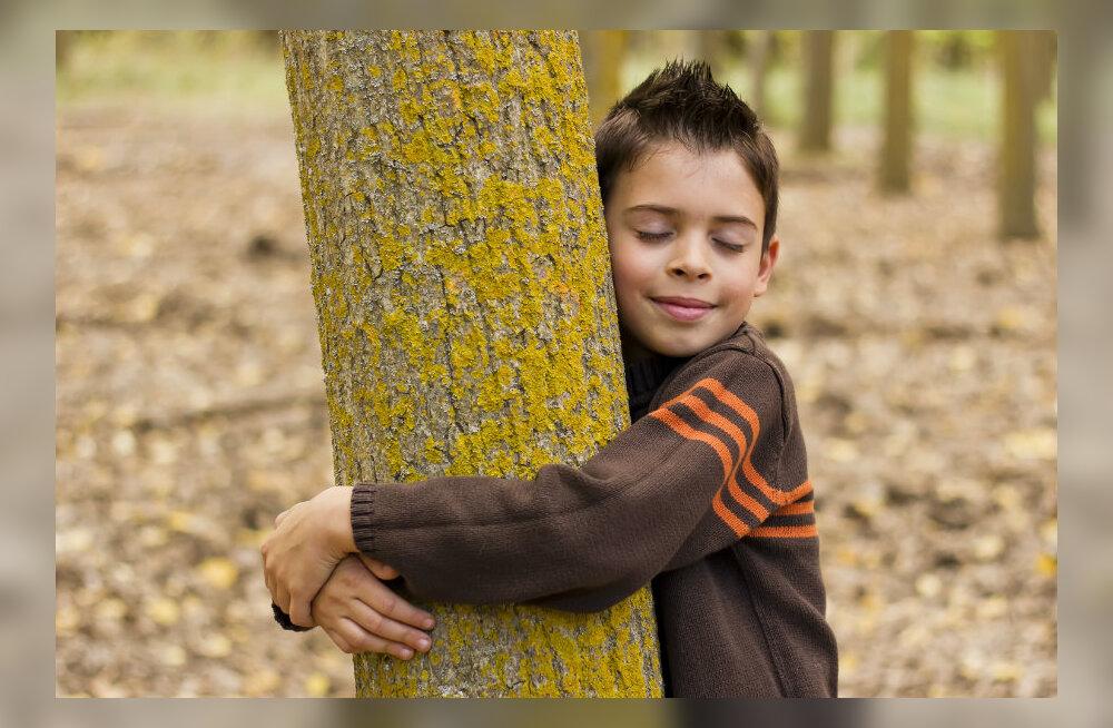 Pühapäeval saab Kadrioru pargis koos teiste loodusesõpradega ühist puukallistamist nautida