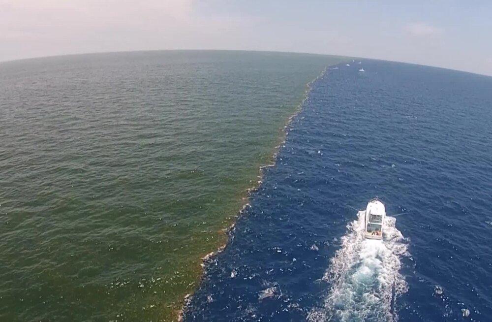 """""""Surnud tsoon"""" Mehhiko lahes võib tänavu ligi kaks korda suuremaks kasvada"""