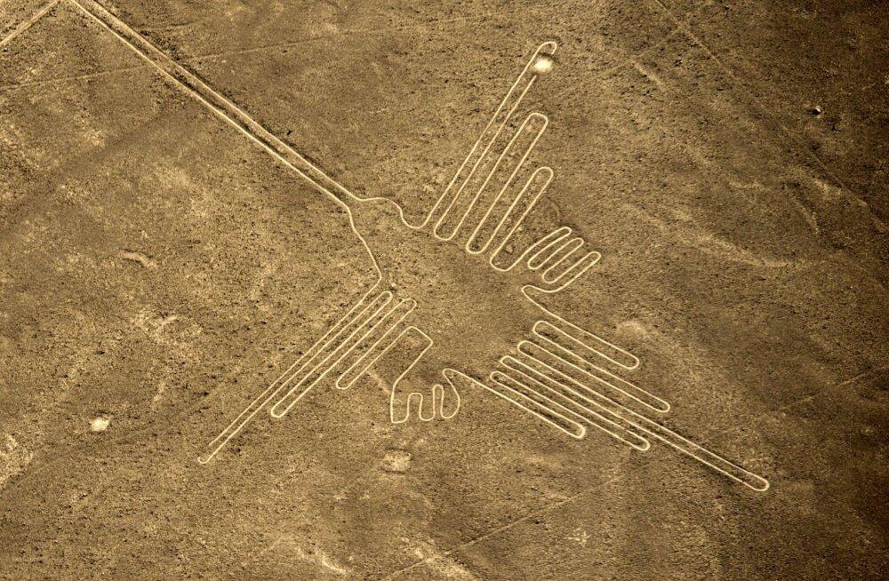 Iidsed joonised rikutud: veokijuht sõitis üle Peruu kuulsate Nazca geoglüüfide