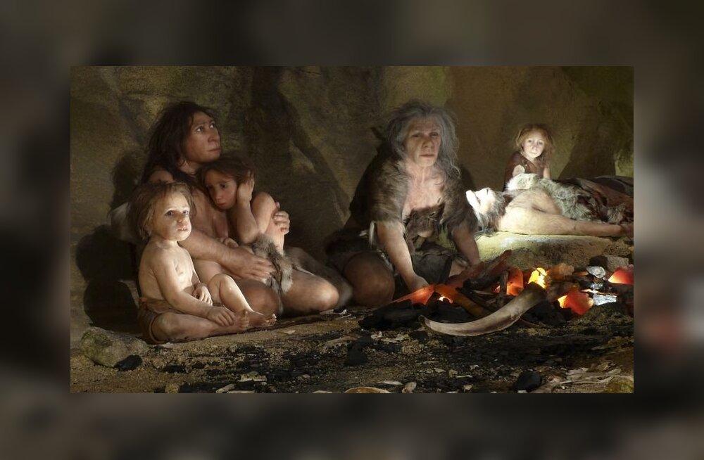 Ka neandertallased kasutasid ravimtaimi!