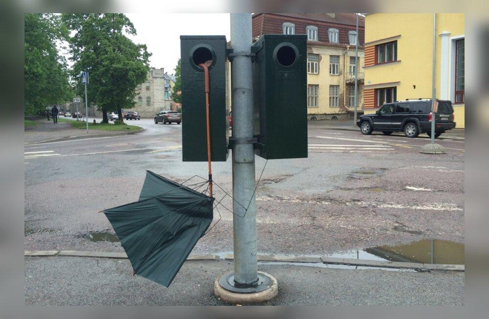 2ef0200601a FOTOD: Prügikasti küljes laperdab kevadtuules nukker vihmavari - DELFI