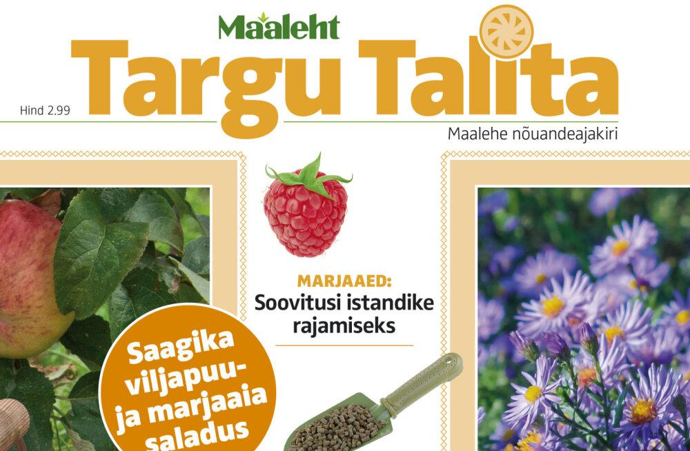 Targu Talita ajakirja sügisnumber nüüd müügil!