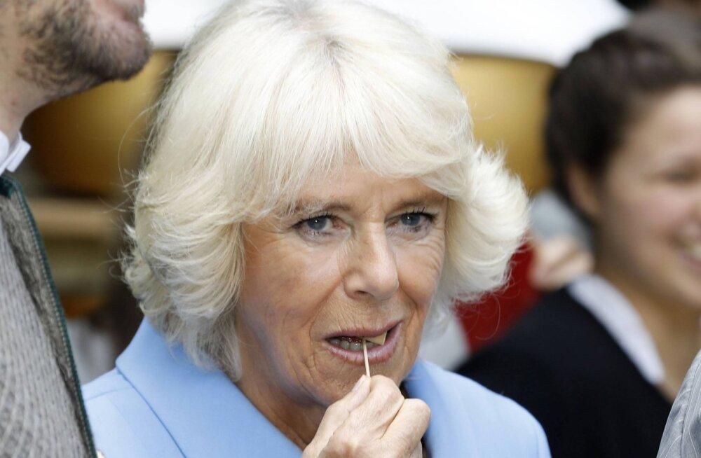 Kehv tervis või suhteprobleemid? Camilla puudub juba mitmendalt oluliselt sündmuselt ega lähe ka Charles'i sünnipäevapeole Indiasse