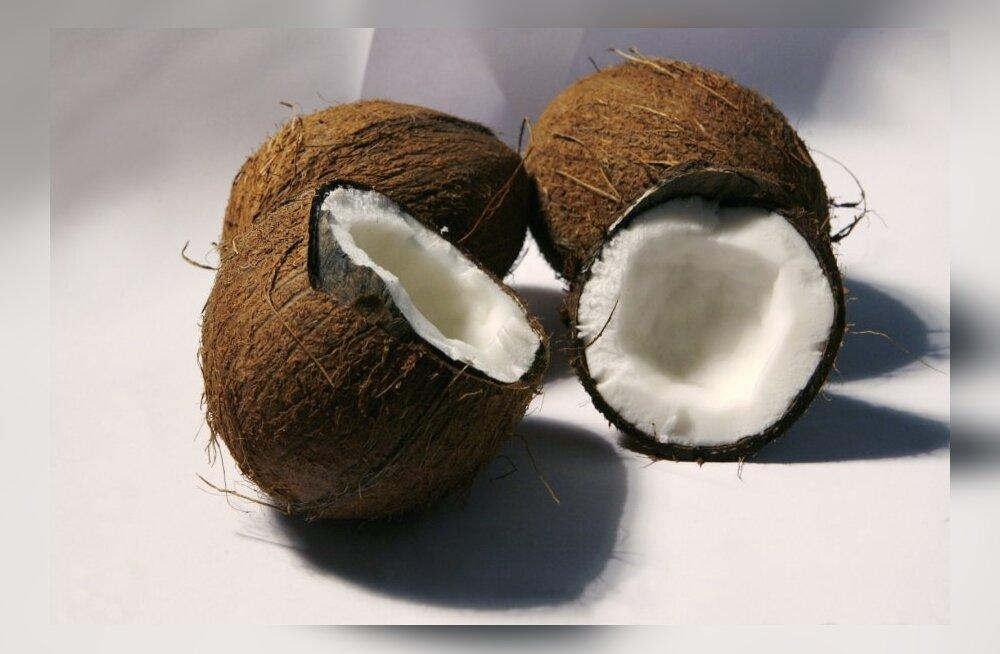VIDEO: Kuidas õnnestub algajal kookospähkli avamine