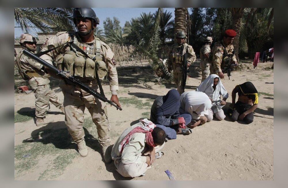 Iraagi armee alustas suurrünnakut Al-Qaida väljatõrjumiseks Anbari provintsist