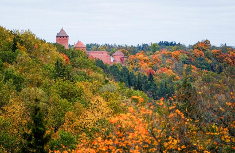 ФОТО. Осеннее путешествие в Латвию: Сигулда в разноцветном наряде