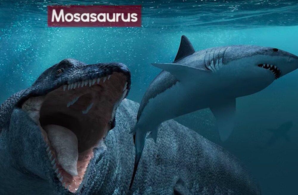 TOP 9 | Need on kõige hirmuäratavamad merekoletised, kes kunagi elanud!