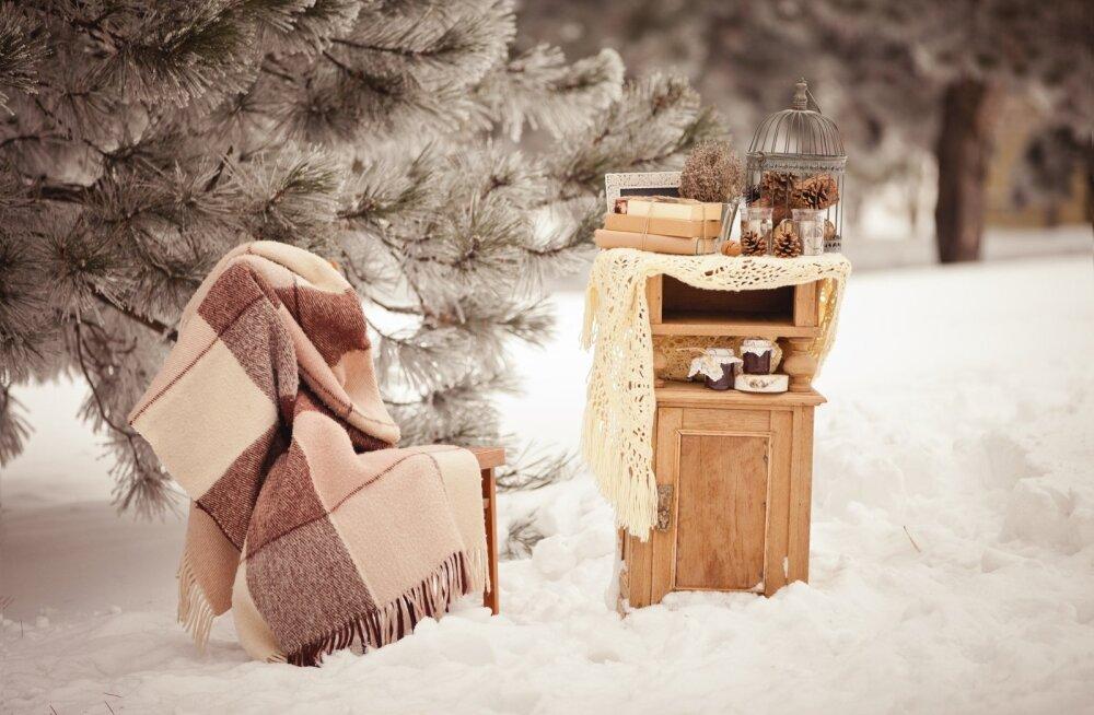Talvine pulm